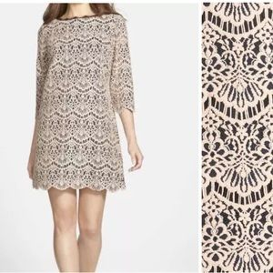 Chelsea 28 lace shift dress 3/4 sleeves floral
